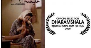 """فيلم """"عائشة"""" للمخرج زكرياء نوري يمثل المغرب في الدورة 22 لمهرجان الإسماعيلية للأفلام التسجيلية والقصيرة"""